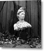 Apollo In The Backyard Metal Print