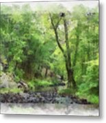Appalachian Creek Metal Print