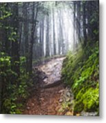 Appalachian Light Metal Print
