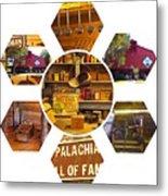 Appalachian Petal Power Metal Print