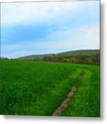 Appalachian Trail In Northern Maryland Metal Print