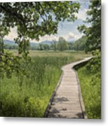 Appalachian Trail - Out Into The Light Metal Print