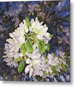 Apple Blossoms At Dusk Metal Print