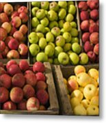 Apple Harvest Metal Print