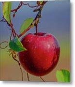 Apple On A Tree Metal Print