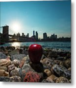 Apple On The Rocks Metal Print