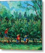 Apple Pickers  Littletree Orchard  Ithaca Ny Metal Print