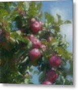 Apples And Sky Metal Print