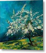 Appletree In Spring Metal Print