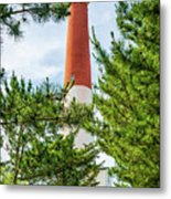 Approach To Barnegat Light Metal Print