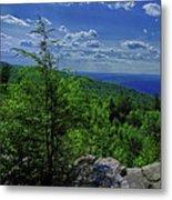 Approaching Little Gap On The Appalachian Trail In Pa Metal Print