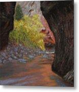 Apricot Canyon Metal Print