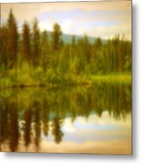 Apricot Reflections Metal Print
