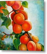 Apricots In The Garden Metal Print