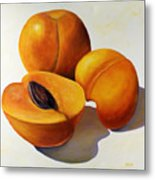 Apricots Metal Print by Shannon Grissom