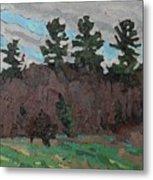 April White Pine Forest Metal Print