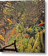 Aquarium Reflections Metal Print