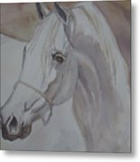 Arab Stallion In The Desert Metal Print