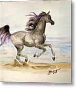 Arabian In Wind Metal Print