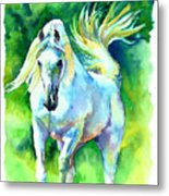 Arabian Stallion Metal Print