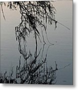 Arbor Reflections Metal Print