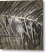 Arborescence Metal Print