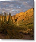 Arch Canyon 3 Metal Print