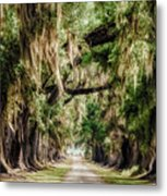 Arch Of Oaks - Evergreen Plantation Metal Print