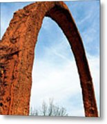 Arch Over Trees Metal Print