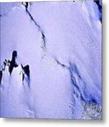 Arctic Fastness  Metal Print
