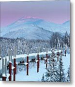Arctic Light Metal Print