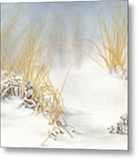 Are You Coming Or What? Metal Print
