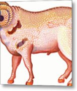 Aries The Ram Metal Print