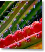 Arizon Colors Metal Print