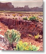 Arizona Arroyo Metal Print