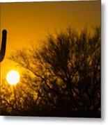 Arizona Cactus #2 Metal Print