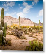 Arizona Desert #3 Metal Print