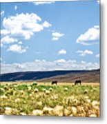 Arizona Desert Horses Metal Print by Ryan Kelly