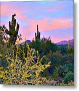 Arizona Desert Metal Print