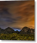 Arizona Ice Tea No.1 Metal Print