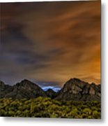 Arizona Ice Tea No.2 Metal Print