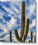 Arizona Saguaro  Metal Print