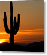 Arizona Sunset 3 Metal Print