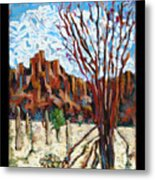 Arizona Trees In Blossom Metal Print