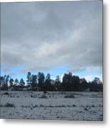 Arizona Winter Landscape Metal Print