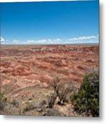 Arizona's Painted Desert Metal Print