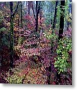 Arkansas Autumn Metal Print