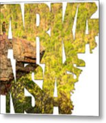 Arkansas Typography - Perspective - Whitaker Point Hawksbill Crag Metal Print