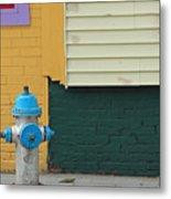 Arlington Hydrant Metal Print