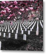 Arlington National Cemetery Metal Print